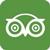 Tinting Tripadvisor